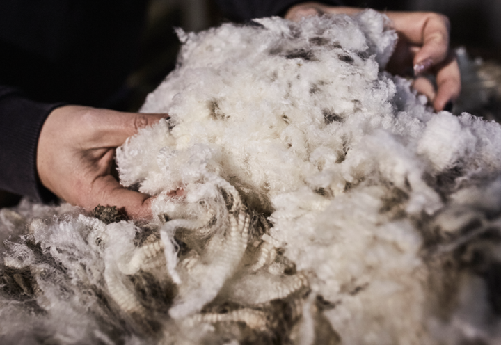 Materials: The Latest Innovations in Wool
